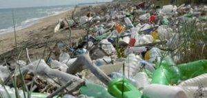 differenze-tra-biodegradabile-e-compostabile